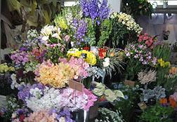 宮前平駅前の花屋です!