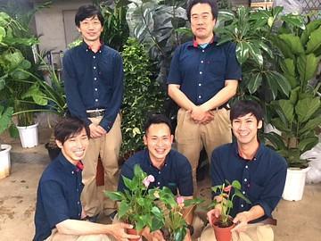 観葉植物のレンタルと販売スタッフ募集