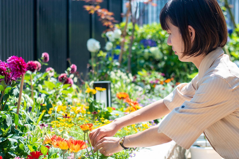 ガーデナー・介護施設のお花管理